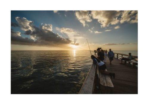 漁港、釣り