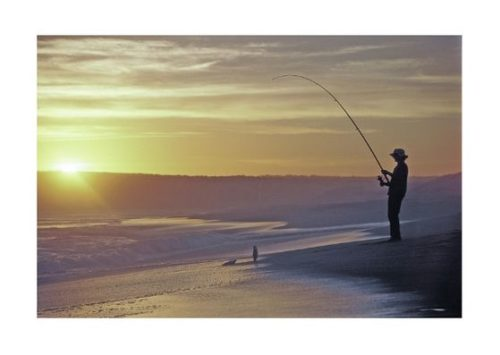 サーフ、釣り