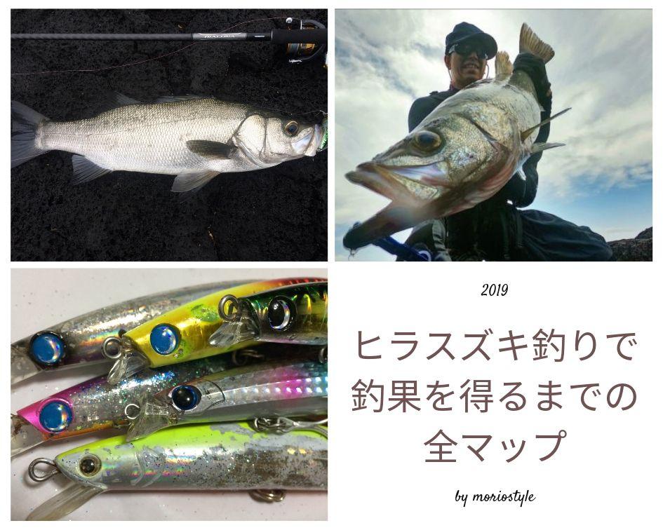 ヒラスズキ釣り方・釣り場・魚の生態